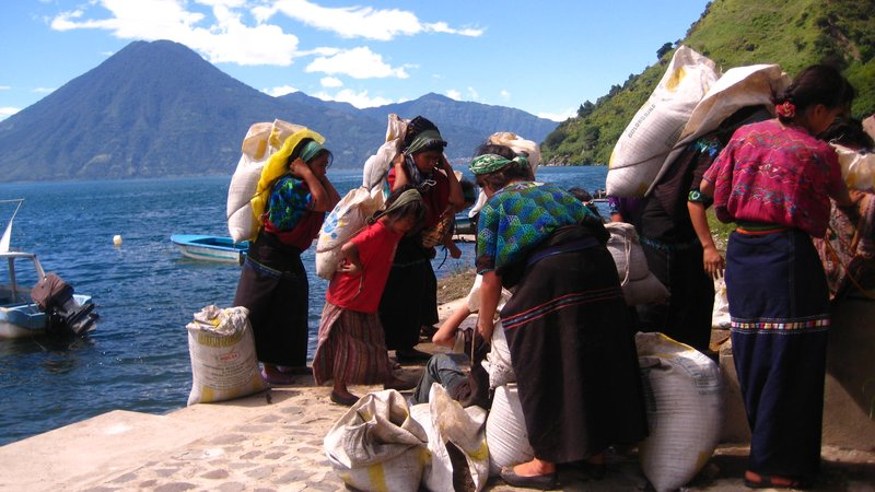 Village Working by the Lake