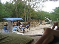 Horse carts are the only way to go on Gili T