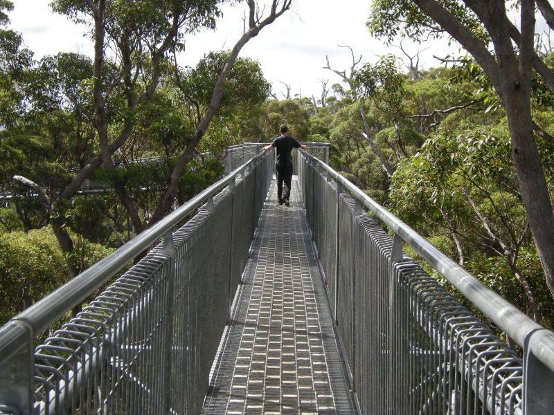 Australia 40