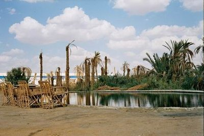 A relaxing spring near Siwa
