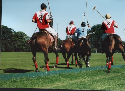 Argentina v Wicklow - Polo