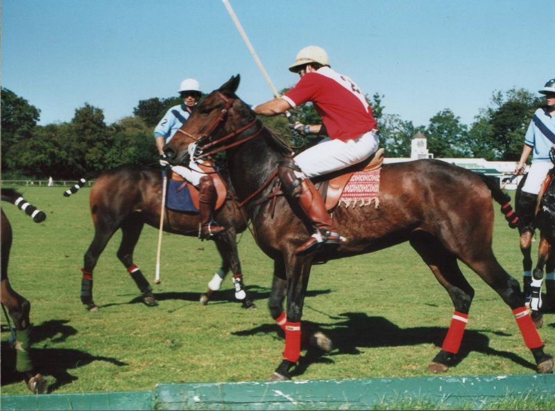Polo in Phoenix Park, Dublin