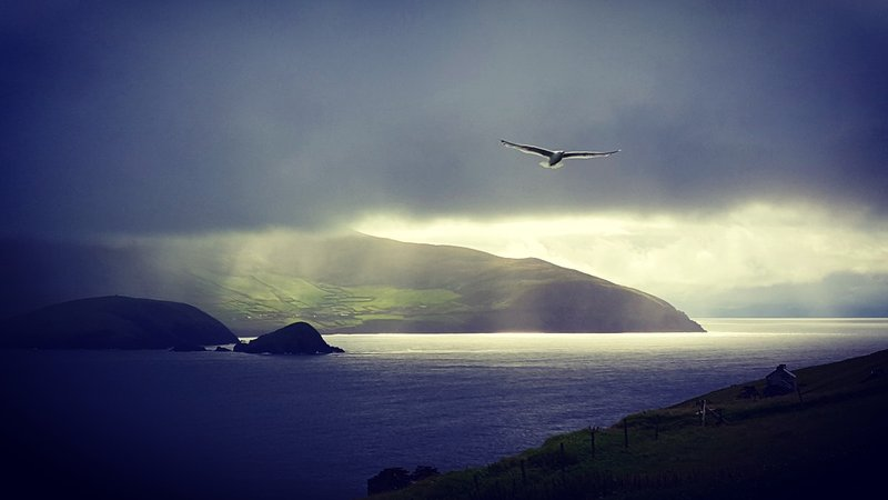 Blasket Islands Morning View