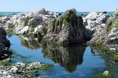Reflections - Kaikoura, New Zealand