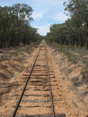 Looking back towards Castlemaine