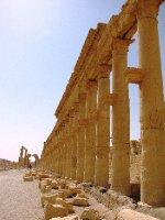 Palmyra_columns.jpg