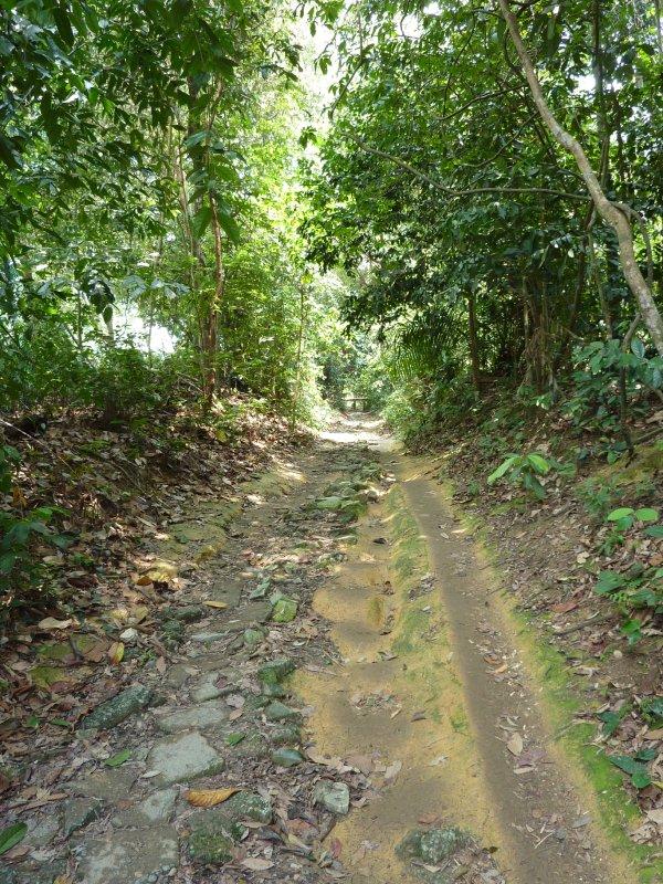Bit of muddy path