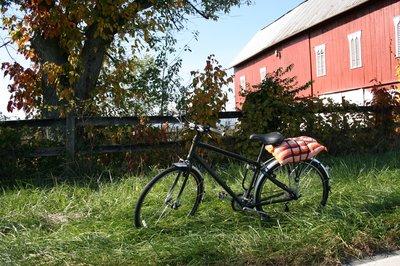 the_best_bike_ever.jpg