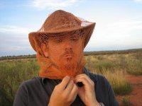 Uluru_-_flies.jpg