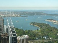 view_from_skytower_4.jpg