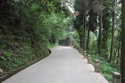 The Way To The Pavilion