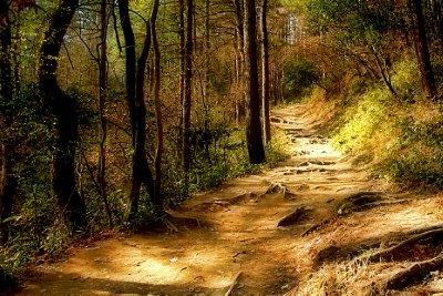 12a-path