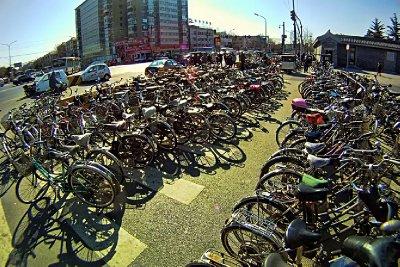 214_bikes