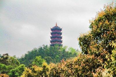 HDR Pagoda View