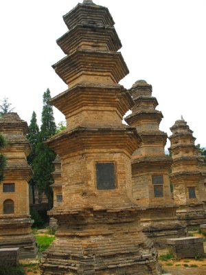 Forest of Pagodas
