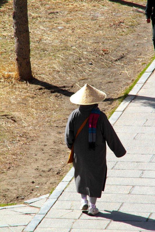 A dangerous kungfu Nun?