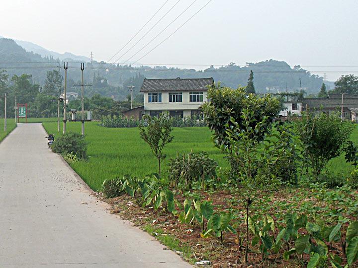 CS Agri Area