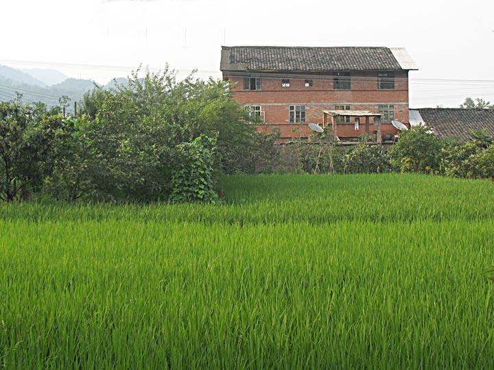 CS Farmhouse