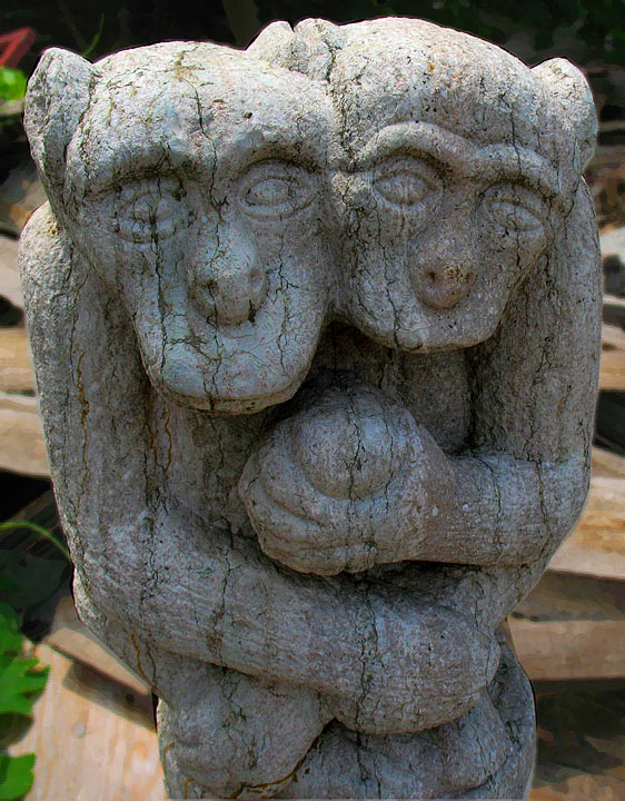 JZ Sashi Pagoda New Monkesy