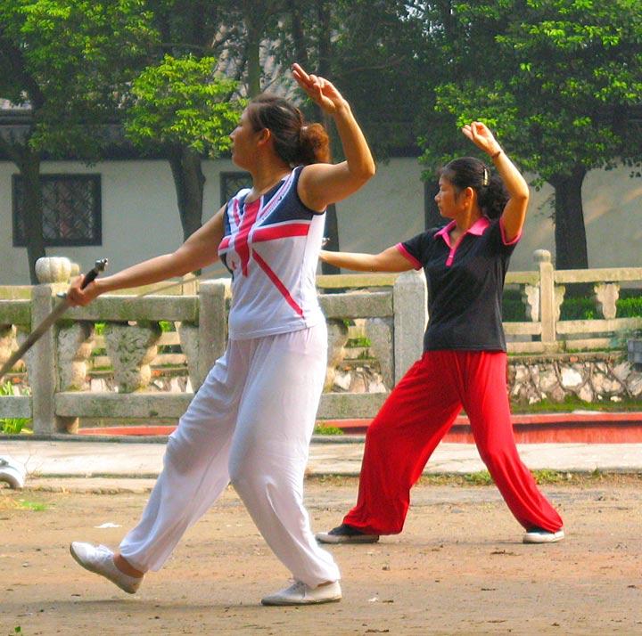 JZ Wanshou Kungfu 2