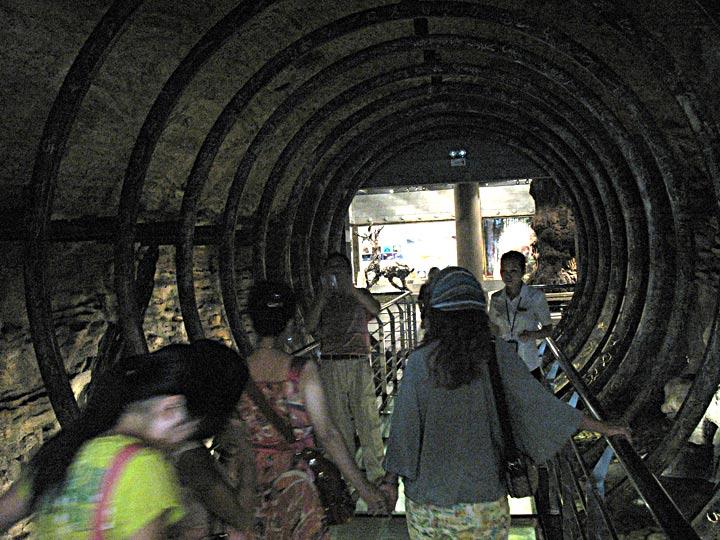 EM Time Tunnel