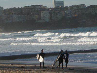 Surfers on Manly Beach