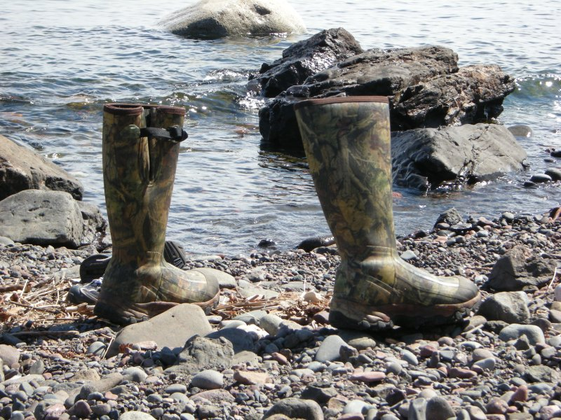 Waders on the North Shore, Lake Superior