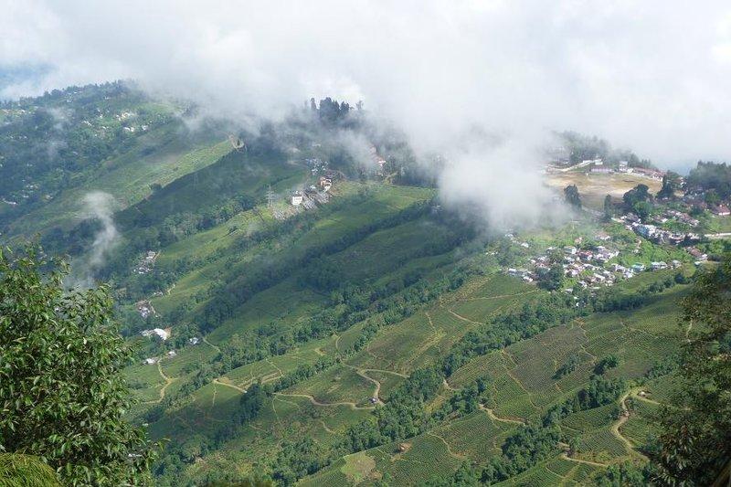 India - Darjeeling - hills