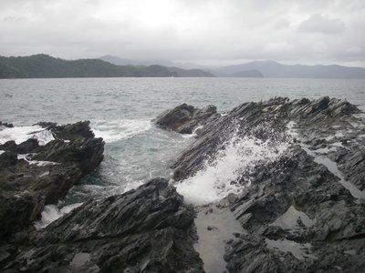 Cacnipa_coast_1.jpg