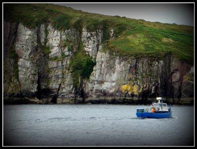 dingleboat