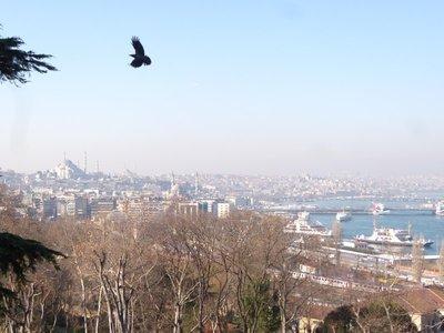 istanbul_20128.jpg