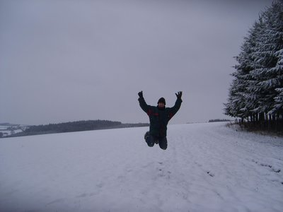 jumping_fo..in_snow.jpg