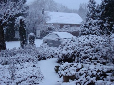 snow_at_home_front.jpg