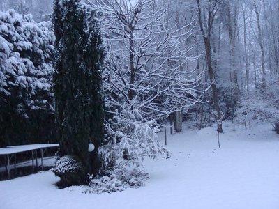 snow_back_2.jpg