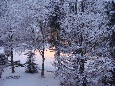 snow_with_..t_light.jpg