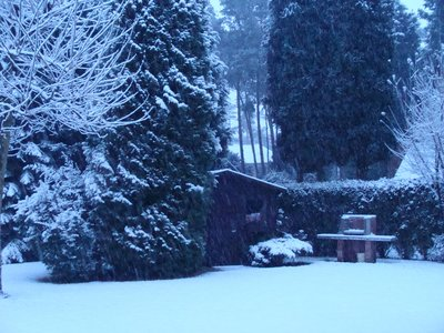 snowing_at_home_back.jpg