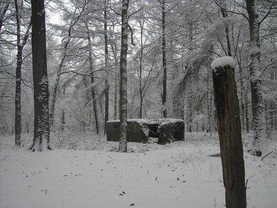 ww2bunker_in_the_snow.jpg