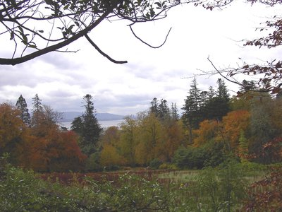 Autumn Colours behind Clan Donald in Skye