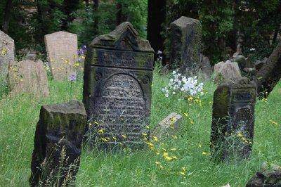 2009 82 Jewish Cemetery 3 Small