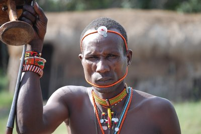 Africa_Sma..warrior.jpg