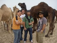 with the dromedaries