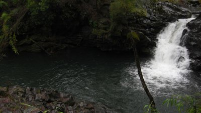 One of many rapids