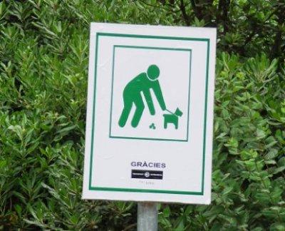park_guell_poop.jpg