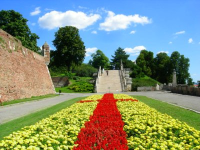 Belgrade: flowers to steps