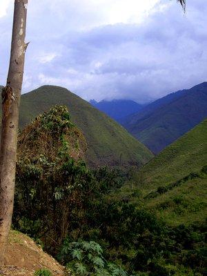 Machu_Picchu_016.jpg