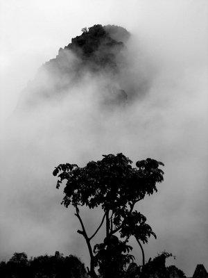 Machu Picchu: fog