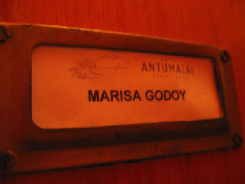 Pucon Antumalal: door name