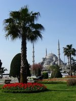 Blue_Mosque.jpg