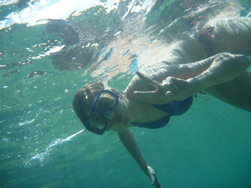 guerilla bay snorkelling