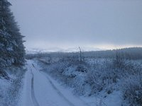 Xmas Day 2004 in South Armagh